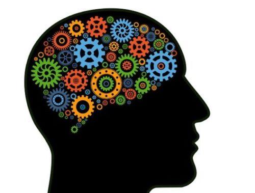 Думающая голова